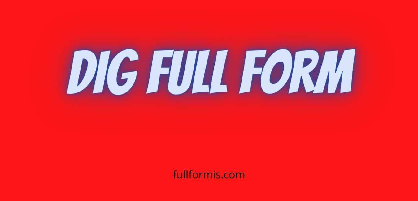 dig full form